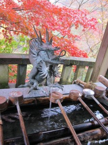 dragon-momiji
